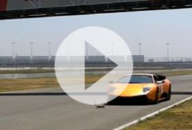 Lambo Murcielago LP670-4 SV vs veverka – video